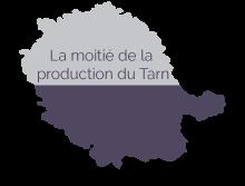 Représentation de la production granit dans le Tarn
